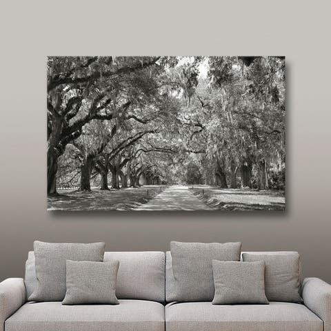 ArtWall Steve Ainsworth 'Live Oak Avenue' Gallery Wrapped Canvas