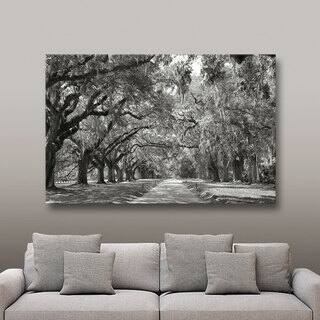 Steve Ainsworth 'Live Oak Avenue' Gallery-Wrapped Canvas|https://ak1.ostkcdn.com/images/products/7942096/P15316503.jpg?impolicy=medium