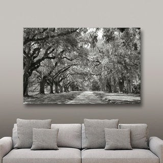 ArtWall Steve Ainsworth 'Live Oak Avenue' Gallery Wrapped Canvas - Black