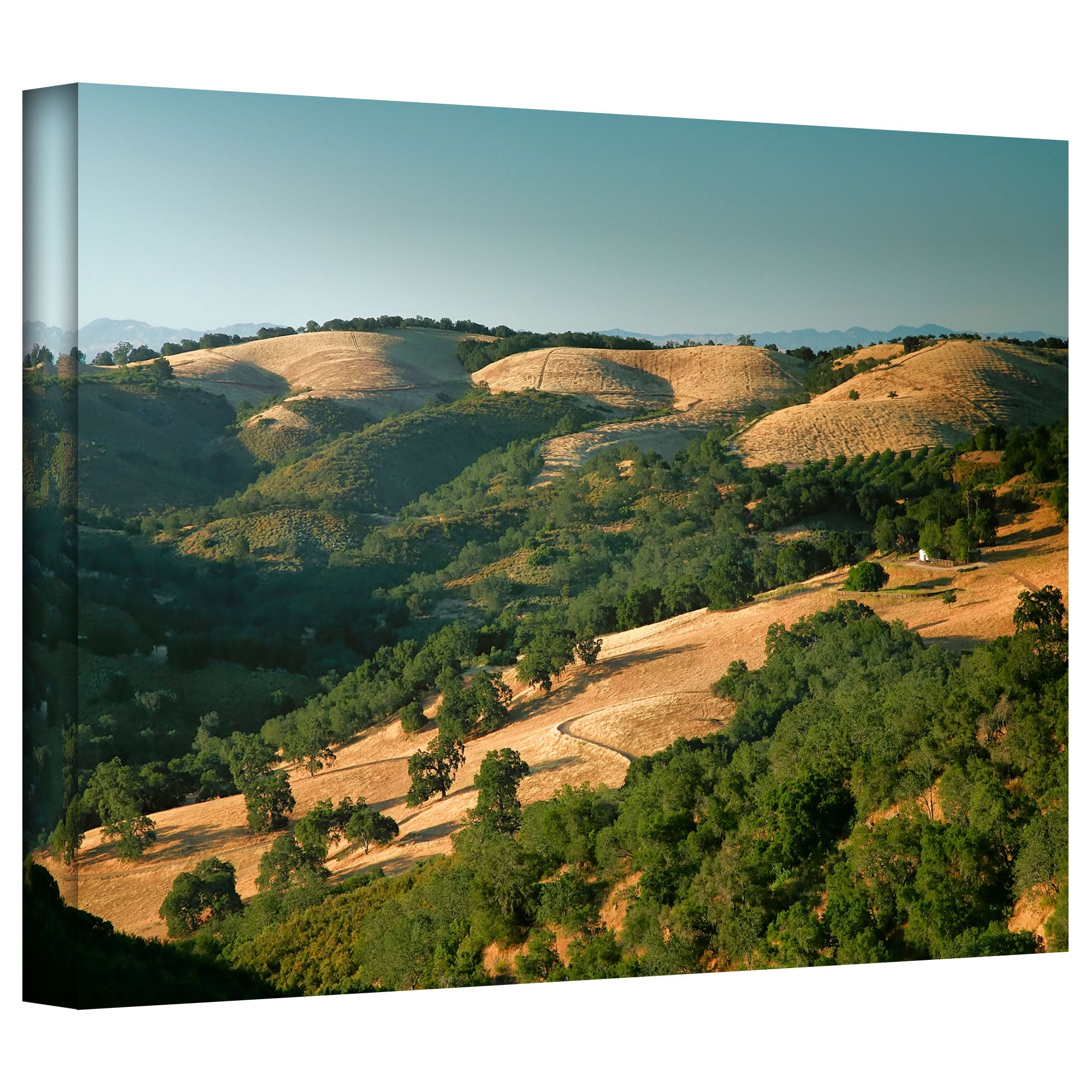 Steve Ainsworth Hills Of California Gallery Wrapped Canvas Multi Overstock 7942097