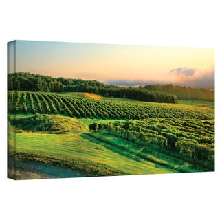 Steve Ainsworth 'Hill-Top Vineyard' Gallery-Wrapped Canvas