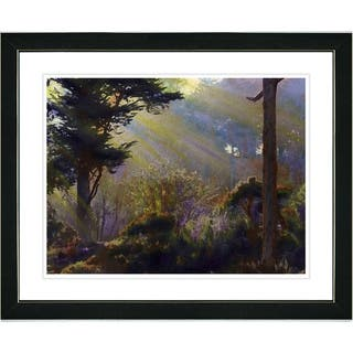 Studio Works Modern 'Forest Sunbeams' Framed Print|https://ak1.ostkcdn.com/images/products/7942181/Studio-Works-Modern-Forest-Sunbeams-Framed-Print-P15316619.jpg?impolicy=medium