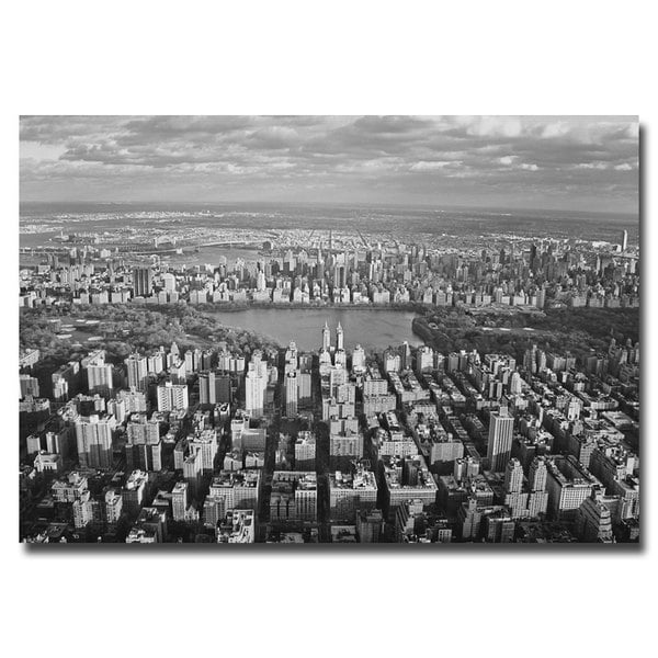 Ariane Moshayedi 'Cloud View' Canvas Art