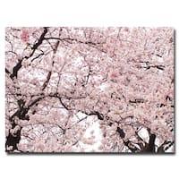 Ariane Moshayedi 'Cherry Blossom Bonanza' Canvas Art