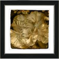 Studio Works Modern 'Sepia Carnation' Framed Print