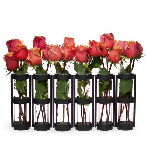 Large Metal Hinged 6-glass Vials Vase