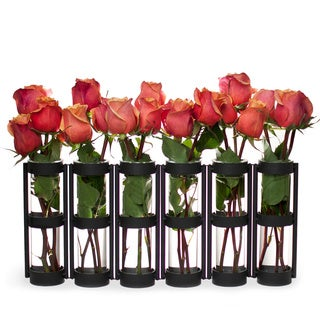 Large Metal Hinged 6-glass Vials Vase
