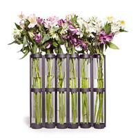 Tall Metal Hinged 6-glass Vial Vase
