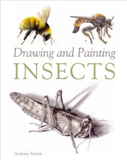 Drawing and Painting Insects (Paperback)
