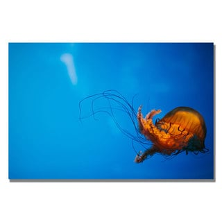 Ariane Moshayedi 'Single Jellyfish' Canvas Art