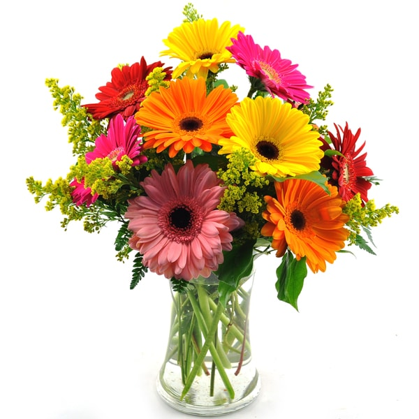(Mother's Day Pre-Order) Sweets in Bloom Assorted Gerber Daisies