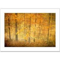 Antonio Raggio 'Lost in Autumn' Unwrapped Canvas