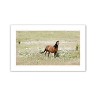 Antonio Raggio 'Equine Stare' Unwrapped Canvas - Multi