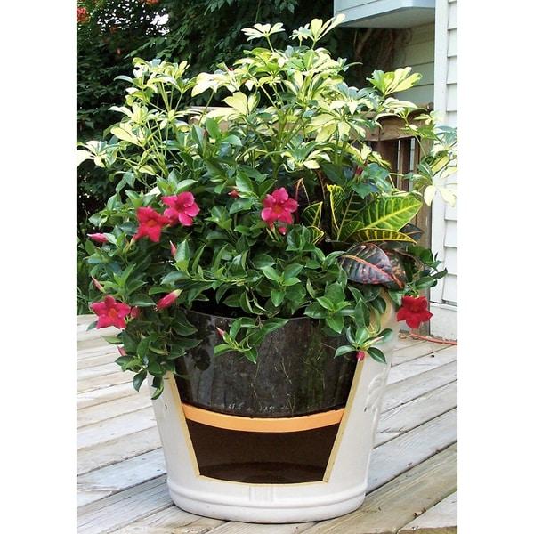 Bloem 'Ups-A-Daisy' Planter Insert