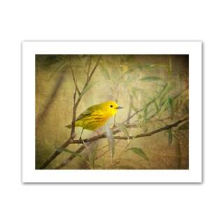 Antonio Raggio 'Bird on Branch' Unwrapped Canvas