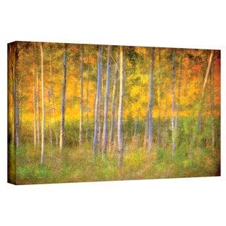 Antonio Raggio 'Into the Wood' Gallery-Wrapped Canvas