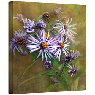 Antonio Raggio 'Flowers in Focus VI' Gallery-Wrapped Canvas