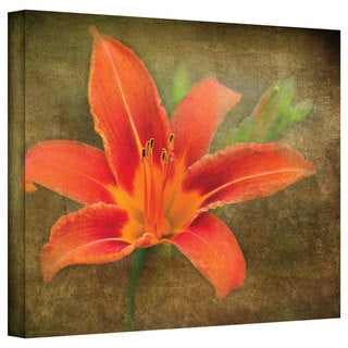 Antonio Raggio 'Flowers in Focus IV' Gallery-Wrapped Canvas
