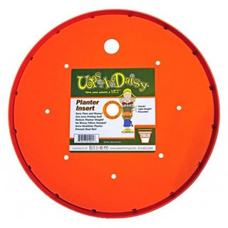 Bloem 'Ups-A-Daisy' Planter Insert (Pack of 12)