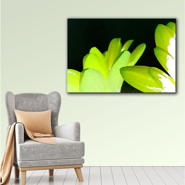 Herb Dickinson 'Gerber Time I' Gallery-Wrapped Canvas