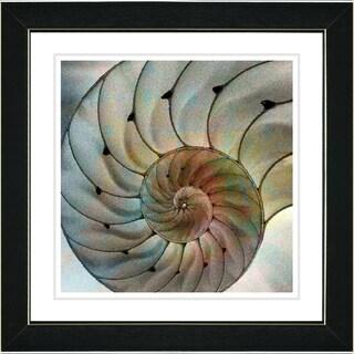 Studio Works Modern 'Nautilus' Framed Print