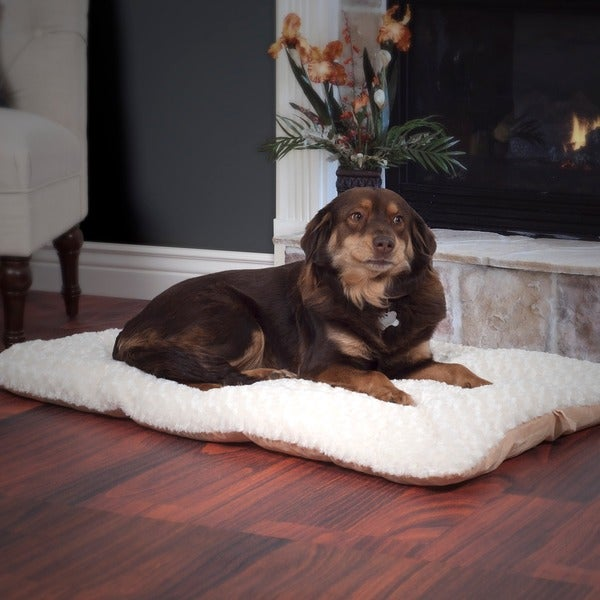 PAW Lavish Cushion Latte/ Cream Pillow Bed