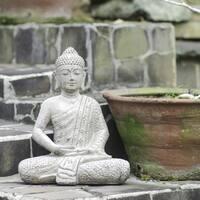 Blossom Gautama Buddha Stonewashed Statue