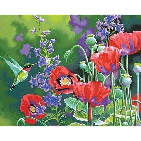 Paint By Number Kit 11X14in-Hummingbird And Poppies