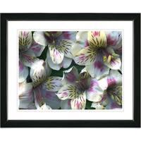 Studio Works Modern 'Spring Flowers - Yellow' Framed Print