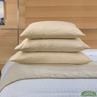 Natura Eco Vibrance Wool Lined Pillow - Natural