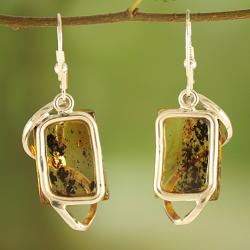 Sterling Silver Swirl Caged Honey Baltic Amber Earrings (Lithuania) - Thumbnail 1