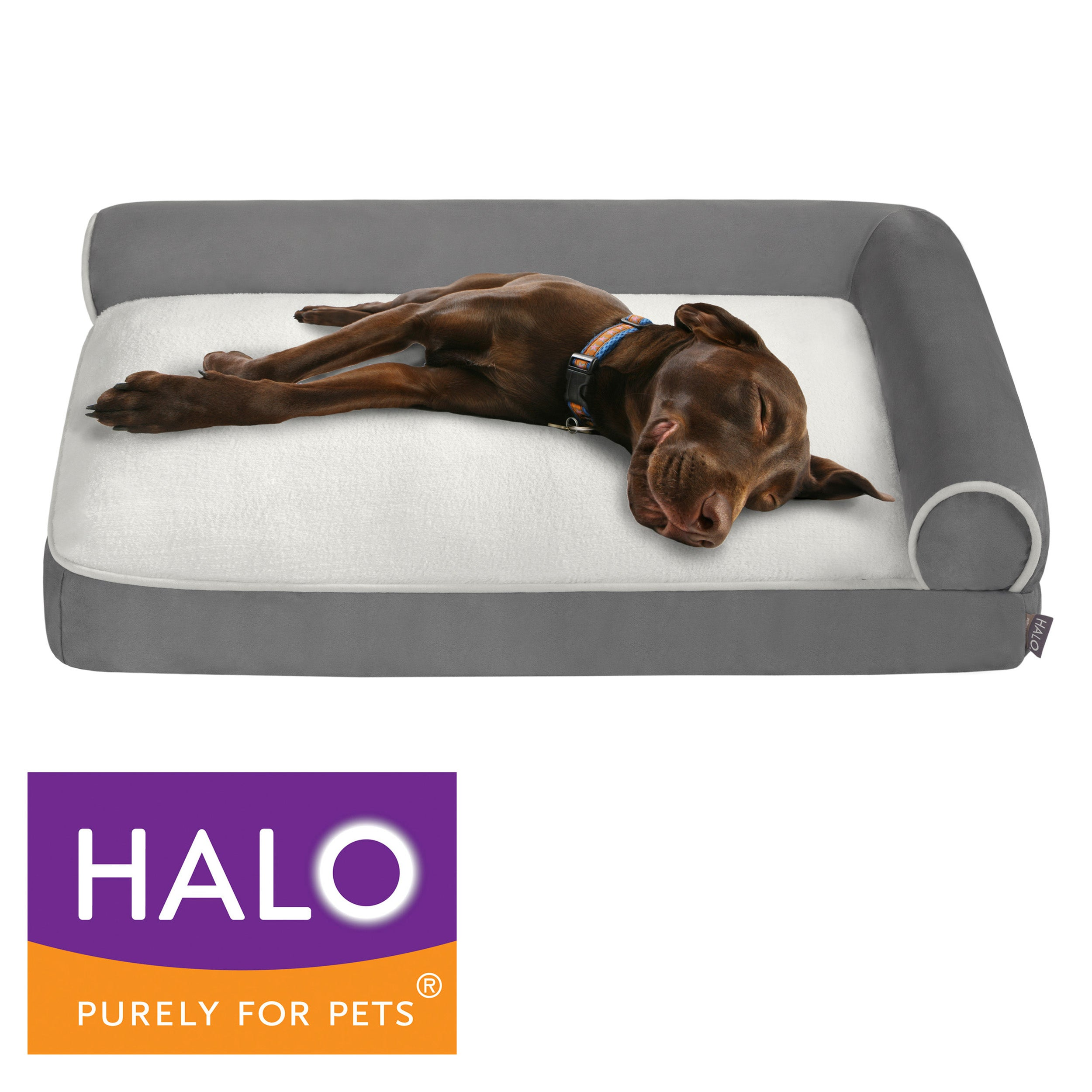 HALO Medium Right Angle Bolster Lounger Free Shipping Today