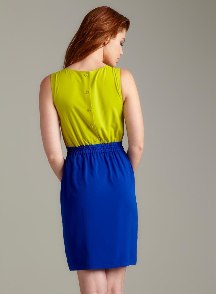 Calvin Klein Sleeveless Colorblocked Dress