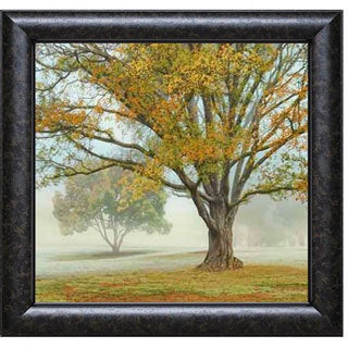 Donald Satterlee 'Obscured by Clouds' Framed Art Print