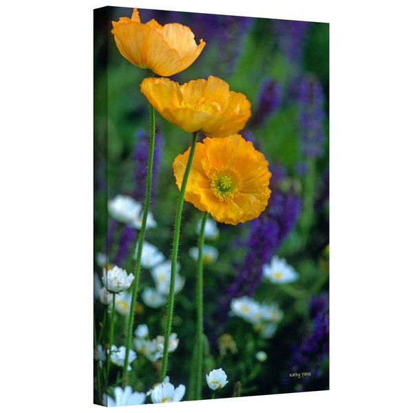 Kathy Yates 'La Playa Poppies' Gallery-Wrapped Canvas