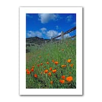 Kathy Yates 'Poppies and the Fence' Unwrapped Canvas - Multi