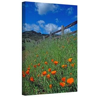 Kathy Yates 'Poppies and the Fence' Gallery-Wrapped Canvas