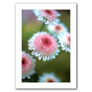 Kathy Yates 'Pincushion Flowers' Unwrapped Canvas