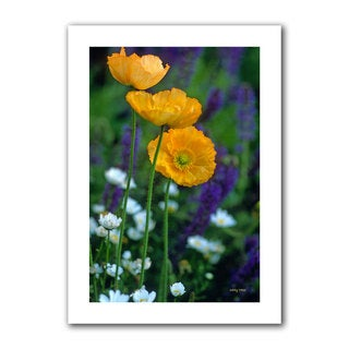 Kathy Yates 'La Playa Poppies' Unwrapped Canvas