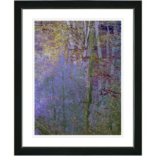 Studio Works Modern 'Summer Forest - Evening' Framed Art Print