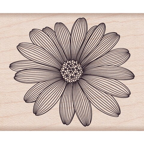 """Hero Arts Mounted Rubber Stamps 4""""X1""""-Etched Daisy"""