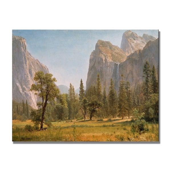 Albert Bierstandt 'Bridal Veil Falls Yosemite' Canvas Art - Multi
