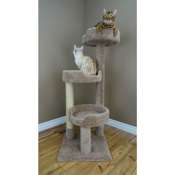 Cheap Cat Furniture Free Shipping