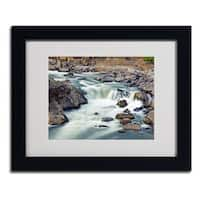 CATeyes 'A Treasure' Framed Matted Art
