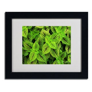 Kathie McCurdy 'Coleus' Framed Matted Art