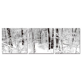 Baxton Studio Winter Woods Mounted Photography Print Triptych - Blue
