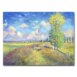 David Lloyd Glover 'Summer Field of Poppies' Canvas Art