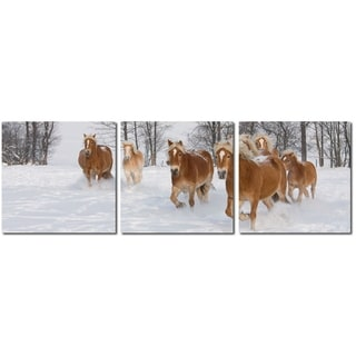 Baxton Studio Horse Herd Mounted Photography Print Triptych