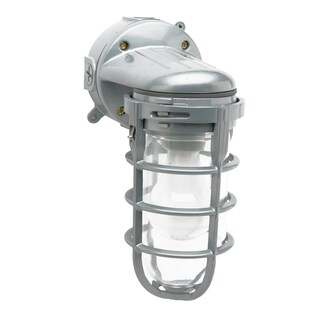 100 Watt Weather Tight Light