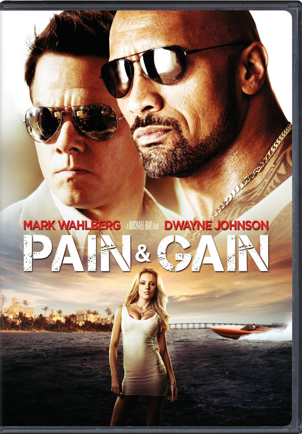 Pain and Gain (DVD)